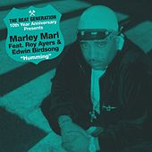 The Beat Generation 10th Anniversary Presents: Marley Marl - Hummin' by Marley Marl