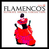 Flamenco's Ultimate Digital Compilation Vol.10 by Various Artists
