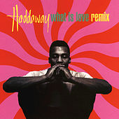 What Is Love (Remix) by Haddaway