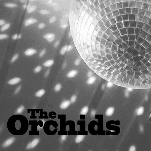 The Way That You Move by The Orchids