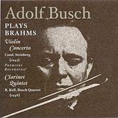 Play & Download Brahms, J.: Violin Concerto (Busch, New York Philharmonic Symphony, Steinberg) (1943) / Clarinet Quintet (Kell, Busch Quartet) (1948) by Various Artists | Napster