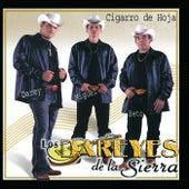 Play & Download Cigarro De Hoja by Los Dareyes De La Sierra | Napster