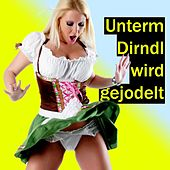 Play & Download Unterm Dirndl wird gejodelt by Zharivari | Napster