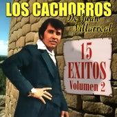 15 Exitos Vol. 2 by Los Cachorros de Juan Villareal