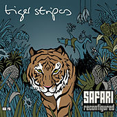 Safari Reconfigured by Tiger Stripes