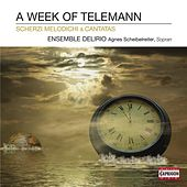 A Week of Telemann by Various Artists