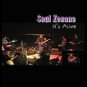 It's Alive by Saul Zonana