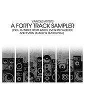 A Forty Track Sampler Part 1 by Various Artists