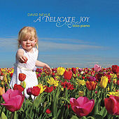 Play & Download A Delicate Joy by David Nevue | Napster