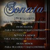 Play & Download 16 Sonatas De Antonio Vivaldi. Música Clásica De Violoncello, Bajo Continuo Y Traverso by Antonio Vivaldi | Napster