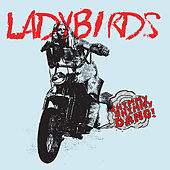 Play & Download Shimmy Shimmy Dang! by The Ladybirds | Napster
