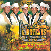 Play & Download Seguridad Personal by Los Nortenos De Cosala | Napster