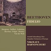 Play & Download Beethoven : Fidelio by Nikolaus Harnoncourt | Napster