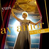 Play & Download Ay Amor by Yuri | Napster