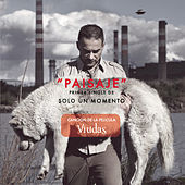 Play & Download Paisaje by Vicentico | Napster
