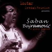 A Gypsy Legend by Saban Bajramovic