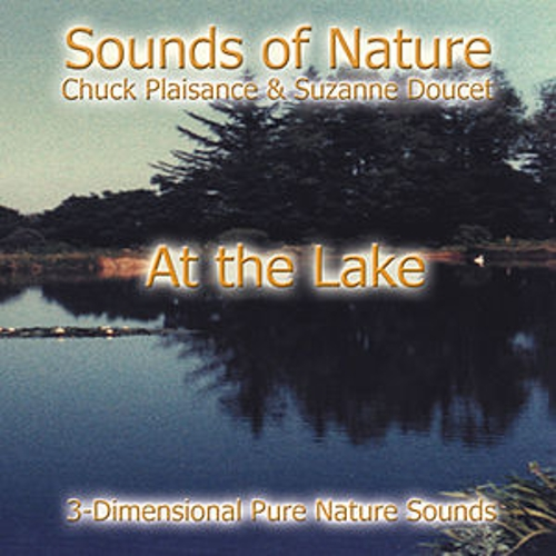 Play & Download At The Lake by Suzanne Doucet & Chuck Plaisance | Napster