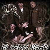 Play & Download El Gallo Negro by MVP | Napster