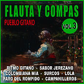 Play & Download Flauta Y Compas Volumen 3 by Diego Carrasco | Napster