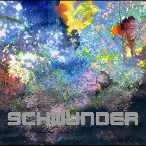 Play & Download Schwunder by Der Nino Aus Wien | Napster