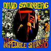 Play & Download The Incredible Shrinking God by David Steinberg | Napster