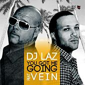 Play & Download You Got Me Going (feat. Vein) - Single by DJ Laz | Napster