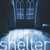 Play & Download Shelter - Single by David Berkeley | Napster