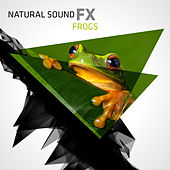 Natural Sound FX: Frogs by Natural Sounds