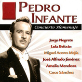 Play & Download Pedro Infante - Concierto Homenaje by Various Artists | Napster