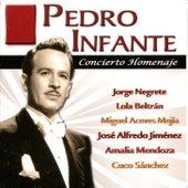 Pedro Infante - Concierto Homenaje by Various Artists