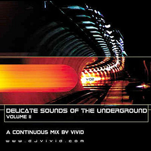 Delicate Sounds Of The Underground, Vol.2 by Perpetual Two