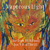 The Eyes of a Fool von Vaporous Light