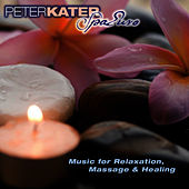 Play & Download Spa Euro by Peter Kater | Napster
