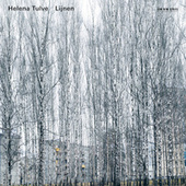 Tulve: Lijnen by Various Artists