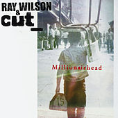 Play & Download Millionairhead by Ray Wilson | Napster