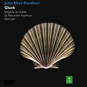 Play & Download Gardiner conducts Iphigénie en Aulide, La rencontre imprévue & Don Juan. by John Eliot Gardiner | Napster