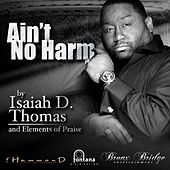 Play & Download Ain't No Harm - Single by Isaiah D. Thomas | Napster