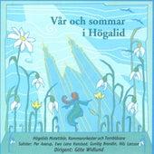 Var och sommar i Hogalid by Gote Widlund