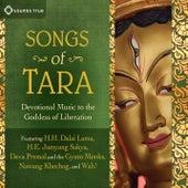 Songs Of Tara by Various Artists
