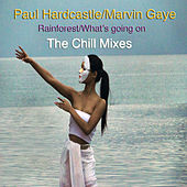 Play & Download Rainforest/What's Going On (The Chill Mixes) by Paul Hardcastle | Napster