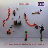 Everything Is Boring and Everyone Is a F---ing Liar by Spank Rock