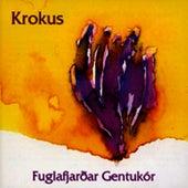 Play & Download Fuglafjardar Gentukor by Krokus (1) | Napster