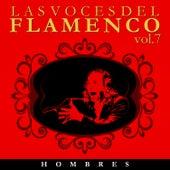 Las Voces del Flamenco - Hombres  Vol.7 (Edición Remasterizada) by Various Artists
