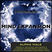 Play & Download Alpha Male Powerful Influence Confidence & Charisma Testosterone Deep Sleep Relaxation Binaural Beats & Solfeggio Tones by Subliminal Mind Expansion | Napster