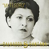 Mi Tesoro - Single by Salvador Santana