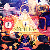 Play & Download Dark Arts by The Starlings | Napster