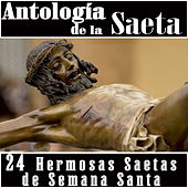 Play & Download Antología de la Saeta. 24 Hermosas Saetas de Semana Santa by Various Artists | Napster