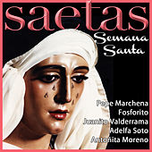 Play & Download Las Saetas de Semana Santa by Various Artists | Napster