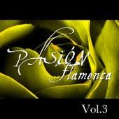 Pasión Flamenca Vol.3 by Various Artists