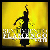 Play & Download Sentimiento Flamenco Vol.10 by Various Artists | Napster